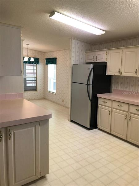 5013 MOUNT OLIVE SHORES, POLK CITY, FL, 33868