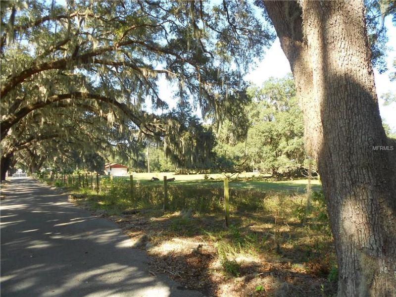 1425 HUEY, WILDWOOD, FL, 34785
