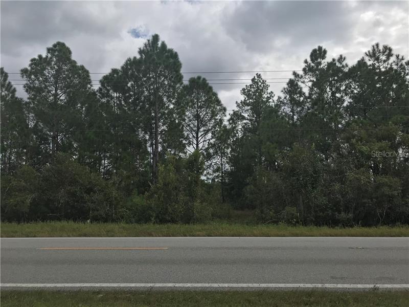 OLD GRADE, POLK CITY, FL, 33868