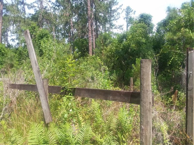 SOUTH PHILLIPS ROAD, CLERMONT, FL, 34711