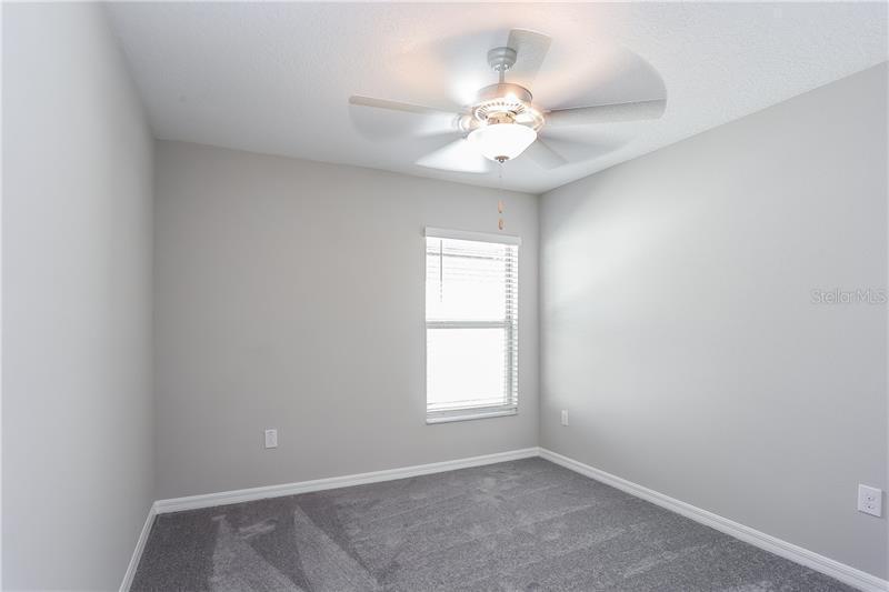 5050 WHITE CHICORY, APOLLO BEACH, FL, 33572