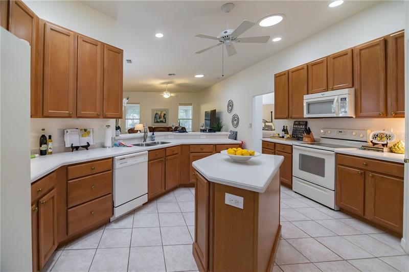19113 BECKETT, ODESSA, FL, 33556