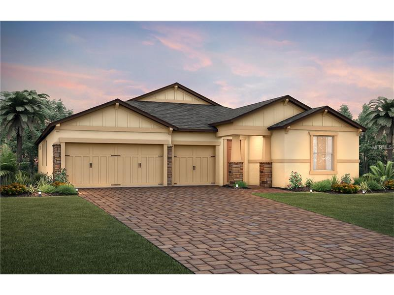 18727  BIRCHWOOD GROVES,  LUTZ, FL