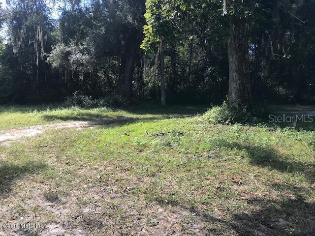 3290 NE 163RD, CITRA, FL, 32113