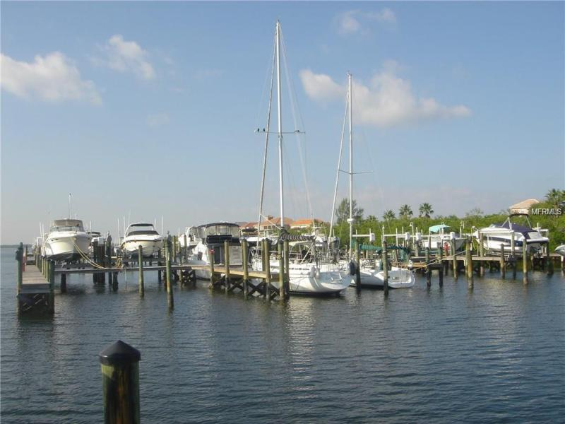 6117 LAGOMAR, APOLLO BEACH, FL, 33572