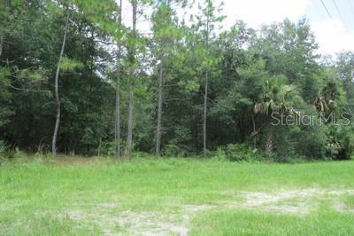 AVENUE B, PAISLEY, FL, 32767