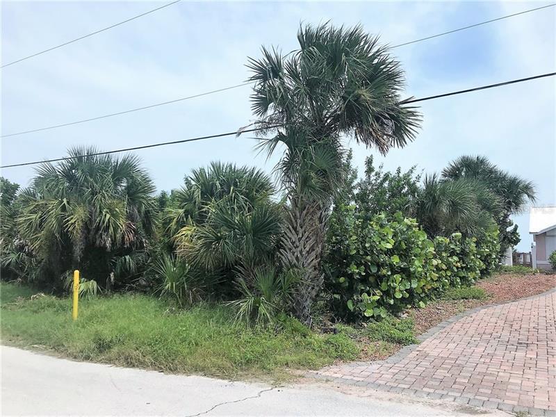 4603 VAN KLEECK, NEW SMYRNA BEACH, FL, 32169