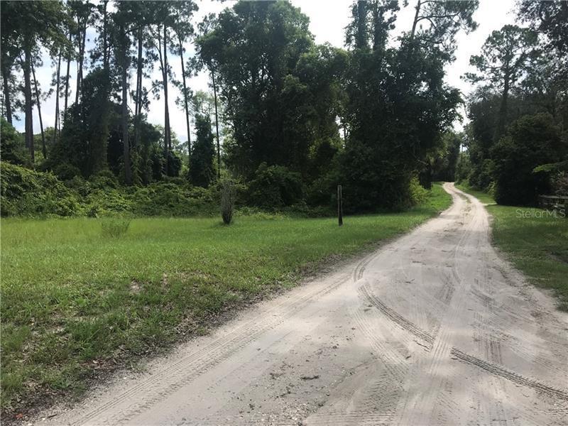 1046 CHAMELEON, PIERSON, FL, 32180