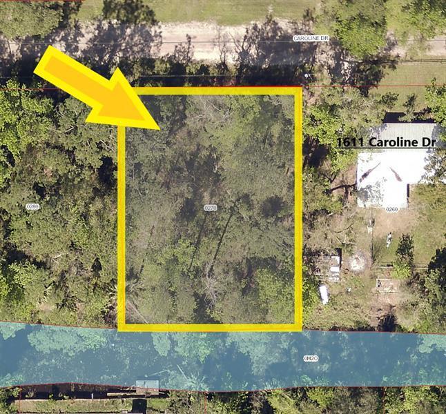 CAROLINE, PIERSON, FL, 32180