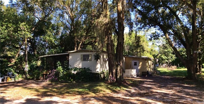 38533  FIR,  ZEPHYRHILLS, FL