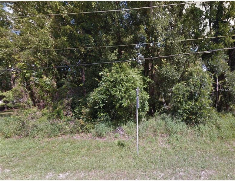 STATE ROAD 46, MOUNT PLYMOUTH, FL, 32776