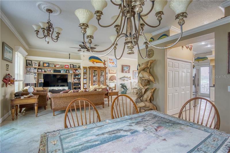 6508 BIMINI, APOLLO BEACH, FL, 33572