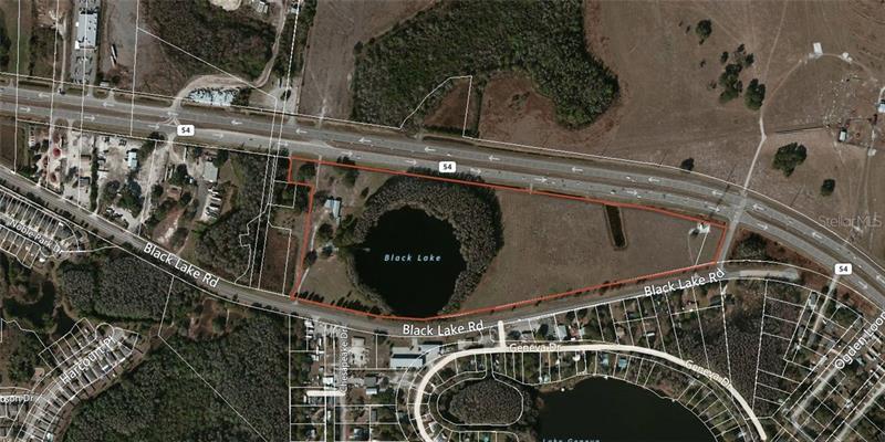 14325 BLACK LAKE, ODESSA, FL, 33556