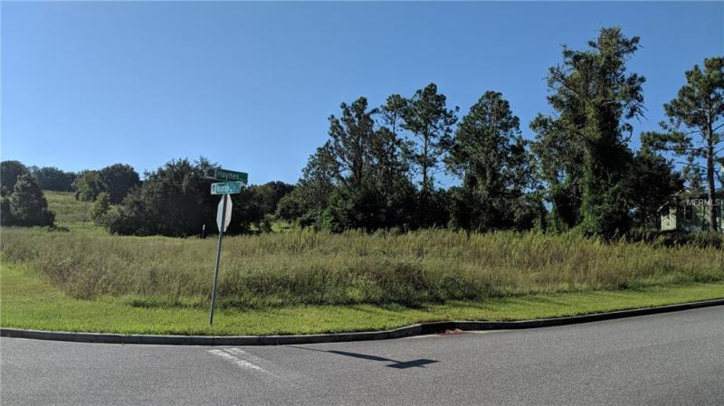1312 MOUNTAIN CLUB, MINNEOLA, FL, 34715