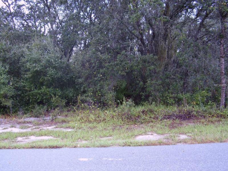 1610 TENCH, KISSIMMEE, FL, 34759