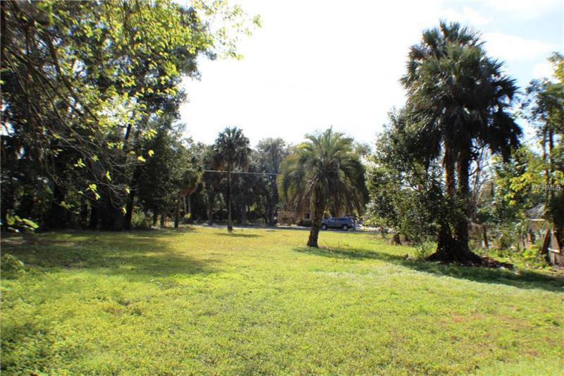 135 W MICHAEL GLADDEN BLVD, APOPKA, FL, 32703