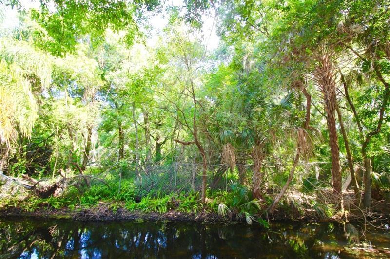 0 AVENUE R NE (LOT 1 E 50 FT), WINTER HAVEN, FL, 33881