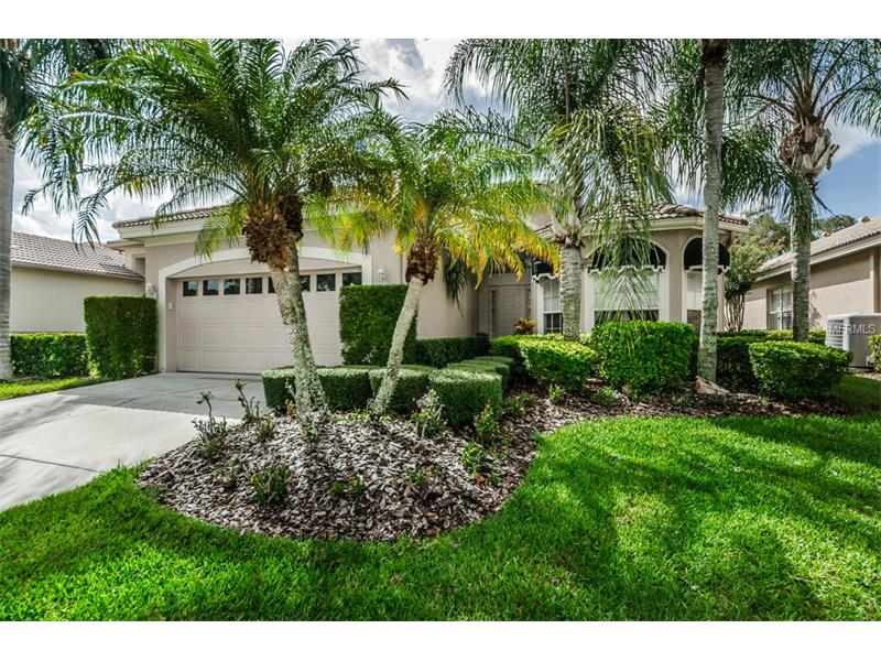 4380  LIVE OAK,  PALM HARBOR, FL
