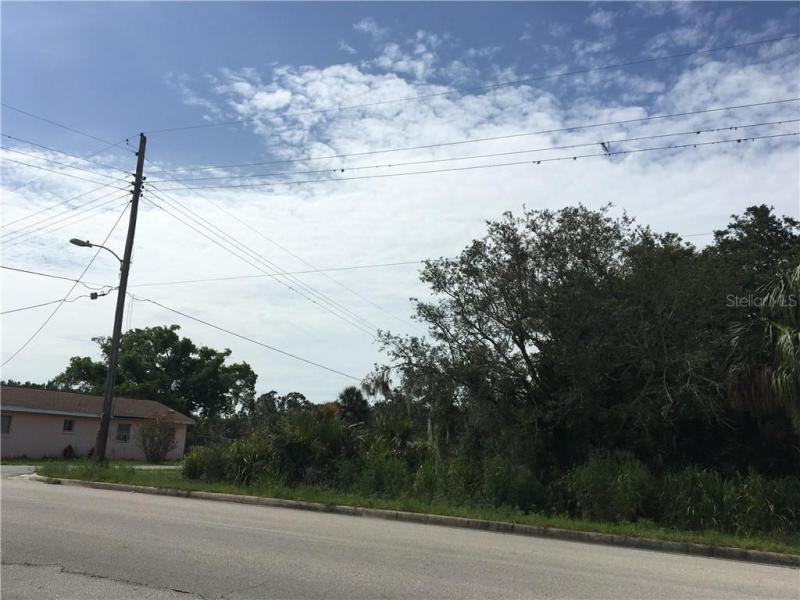 301 E CORNELL, AVON PARK, FL, 33825