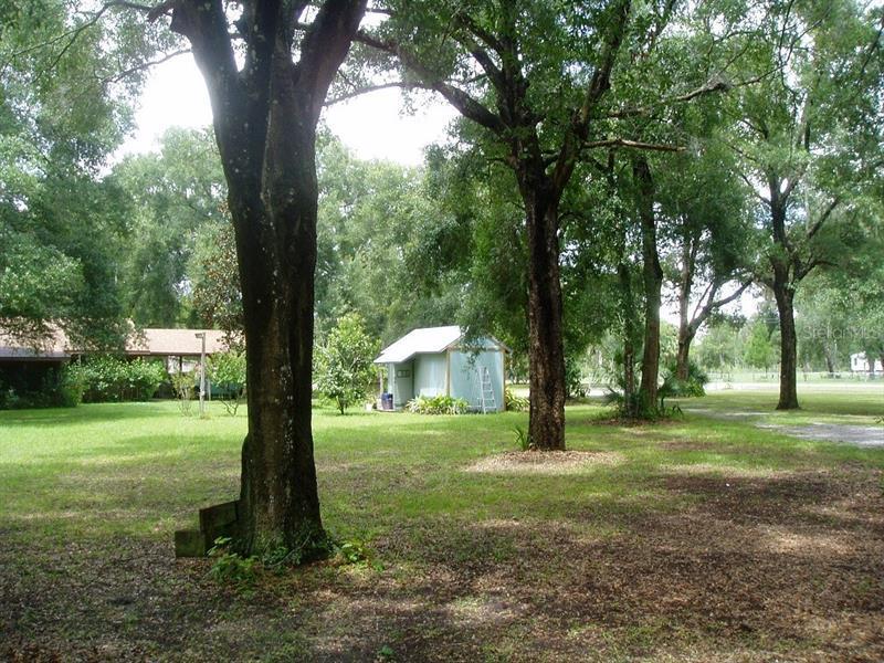 411 HARPER, PIERSON, FL, 32180
