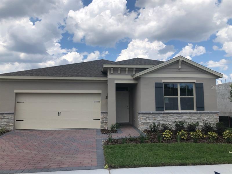 17837  BLAZING STAR,  CLERMONT, FL