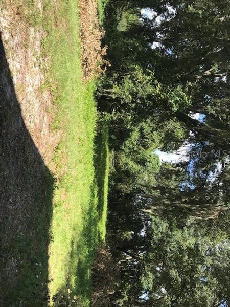 SPICEWOOD, MOUNT DORA, FL, 32757