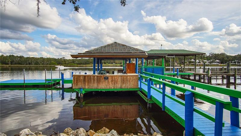 ALAFIA RIVER COUNTRY MEADOWS M - RIVERVIEW - T2915948-7