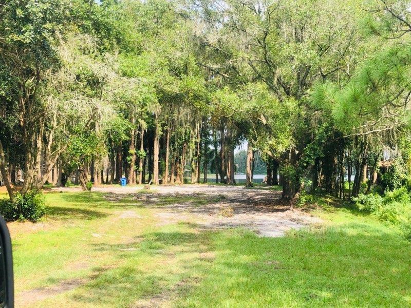 17509 BROWN, ODESSA, FL, 33556