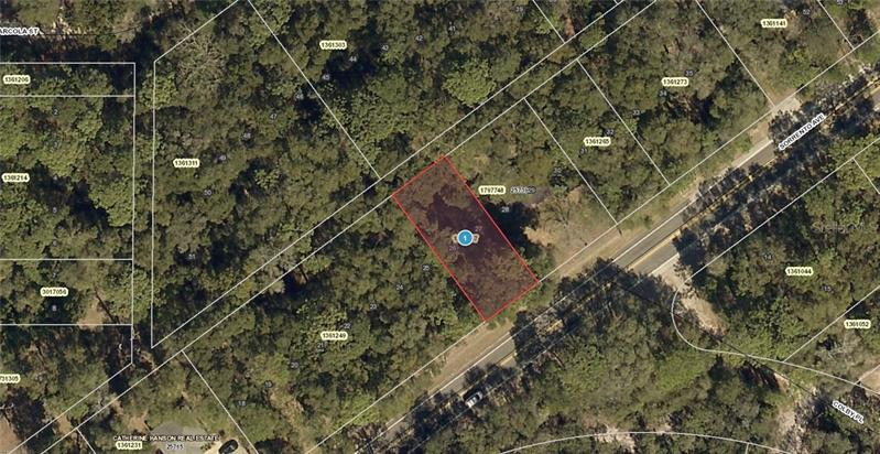 25731  STATE ROAD 46,  MOUNT PLYMOUTH, FL