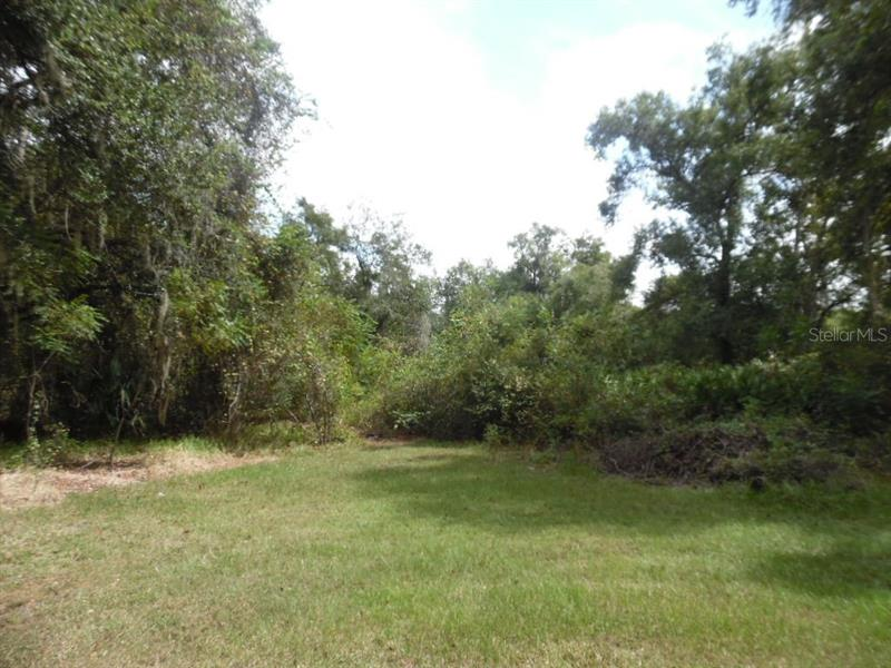 17436 TIMBERLINE, MOUNT DORA, FL, 32757