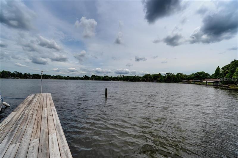 10529 LAKE WILLIAMS, ODESSA, FL, 33556