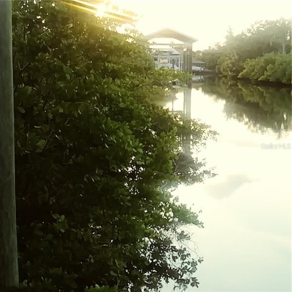 517 TREVISO, APOLLO BEACH, FL, 33572