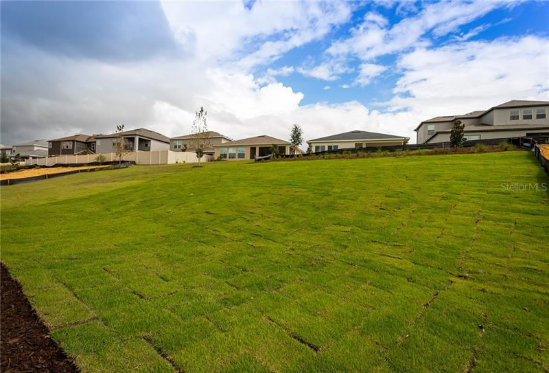 13306 BLOSSOM VALLEY, CLERMONT, FL, 34711