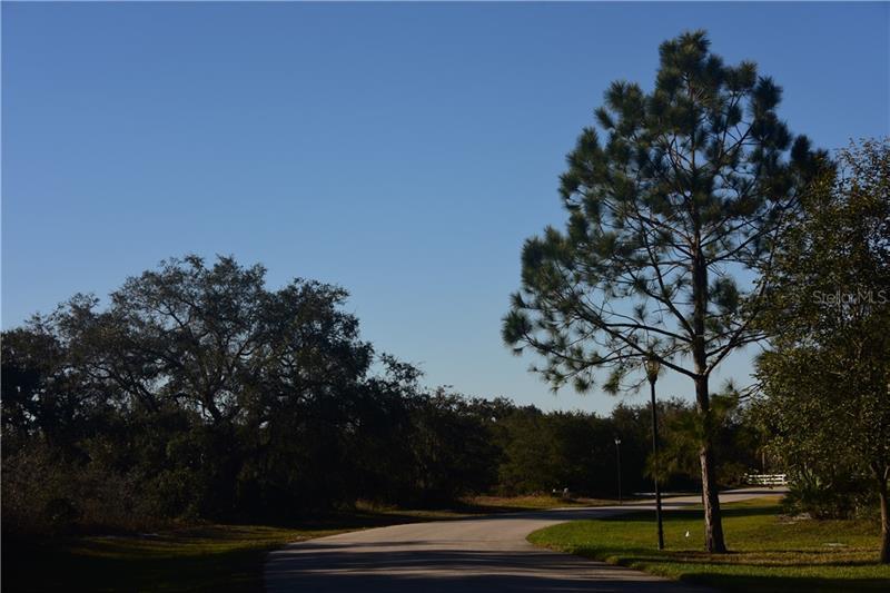 4321 DUCK DOWN, WINTER HAVEN, FL, 33884