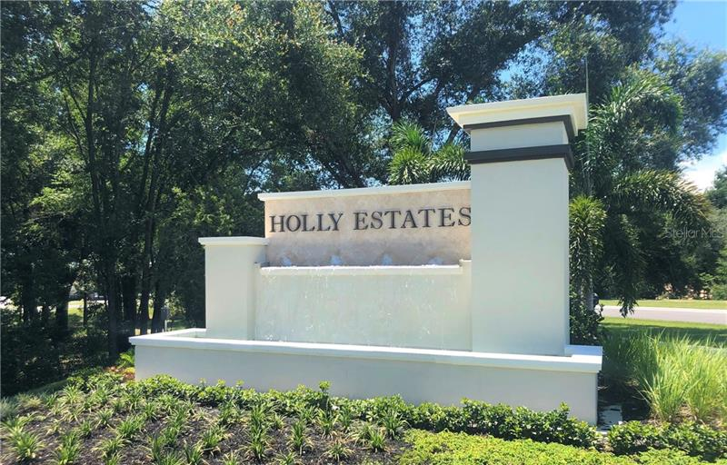 3736 HOLLY GROVE, MOUNT DORA, FL, 32757