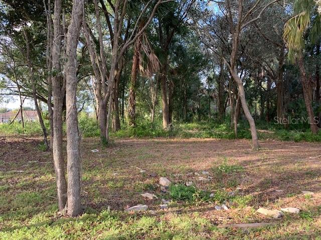BLOXAM, CLERMONT, FL, 34711