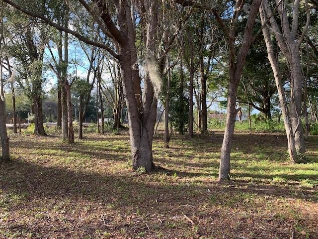 E DESOTO, CLERMONT, FL, 34711