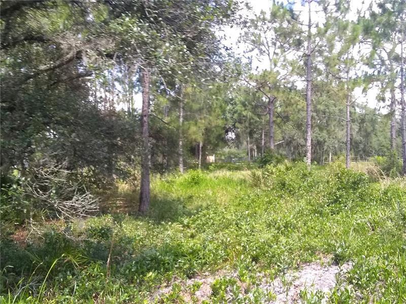 POMPANO, CLERMONT, FL, 34714