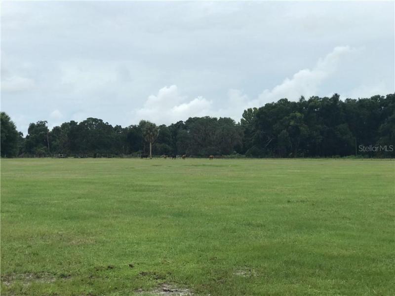 CR 505, WILDWOOD, FL, 34785