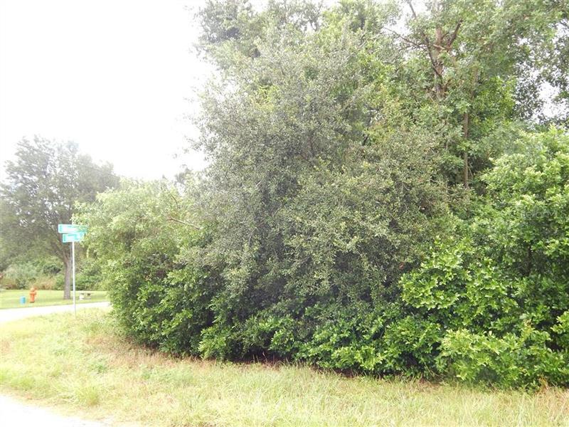 ILLINOIS, BABSON PARK, FL, 33827