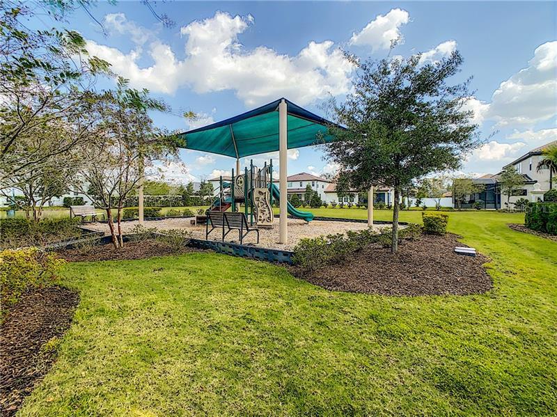 13531 GORGONA ISLE, WINDERMERE, FL, 34786