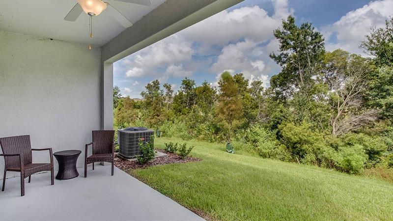 2878 SUNCOAST PLAINS, ODESSA, FL, 33556