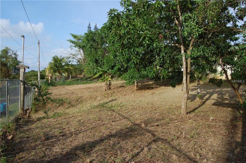 Carretera  KILOMETRO 99.3 BARRIO COCOS, QUEBRADILLAS, FL, 00678