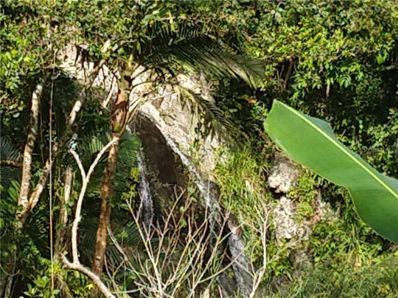 0 PR 149 BO. ALA DE PIEDRA VILLA, OROCOVIS, FL, 00720
