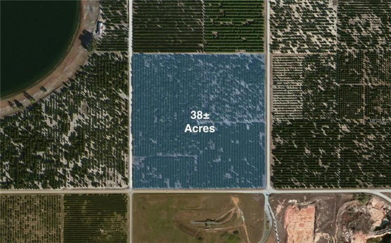 667 E COUNTY ROAD 17, AVON PARK, FL, 33825