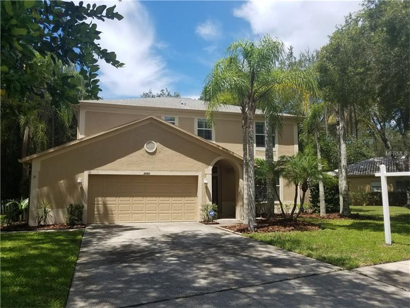 2051  BACKWATER,  PALM HARBOR, FL