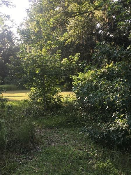 1630 SHELL HARBOR, PIERSON, FL, 32180