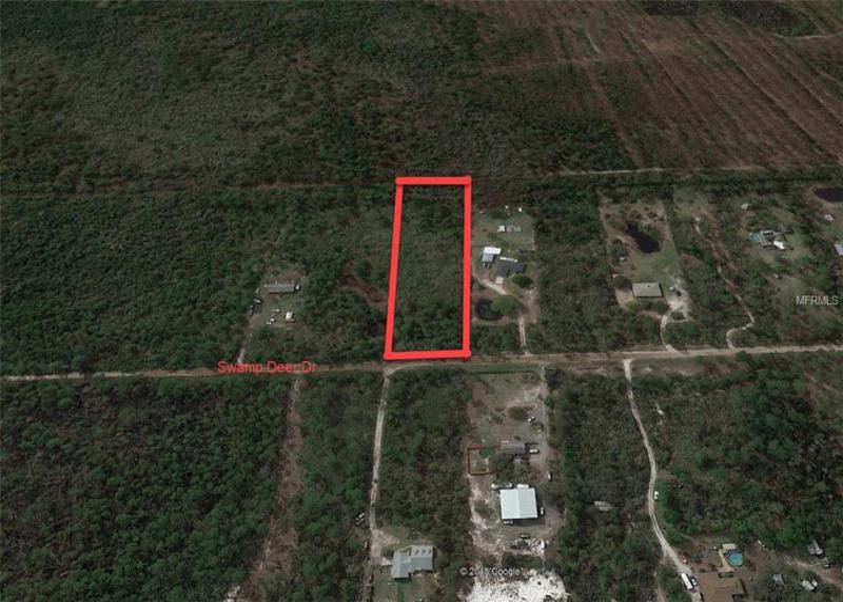 SWAMP DEER, NEW SMYRNA BEACH, FL, 32168