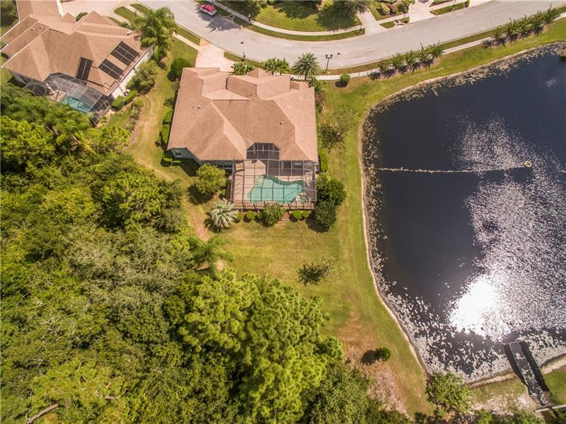 1503 LAKE POLO, ODESSA, FL, 33556