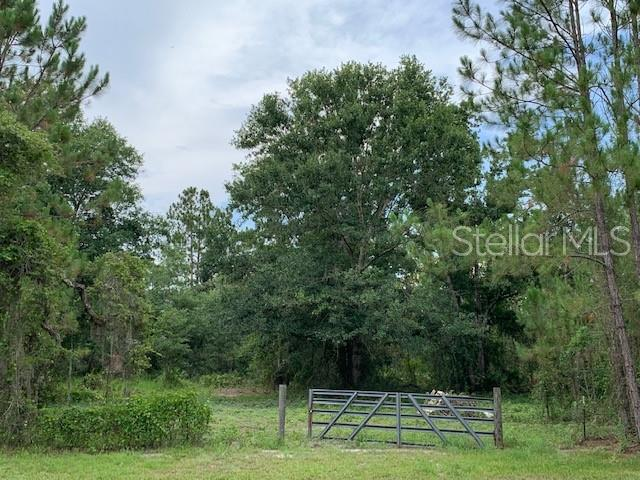 OIL WELL, CLERMONT, FL, 34714